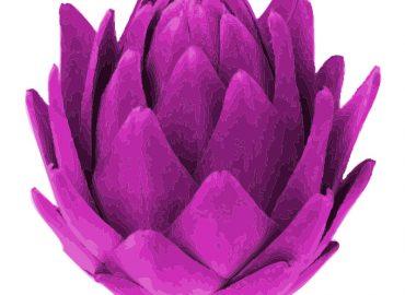 pink artichoke