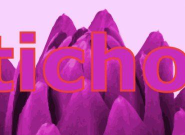 Pink Artichoke Dove nasce l'idea di WEeKanDesign.it