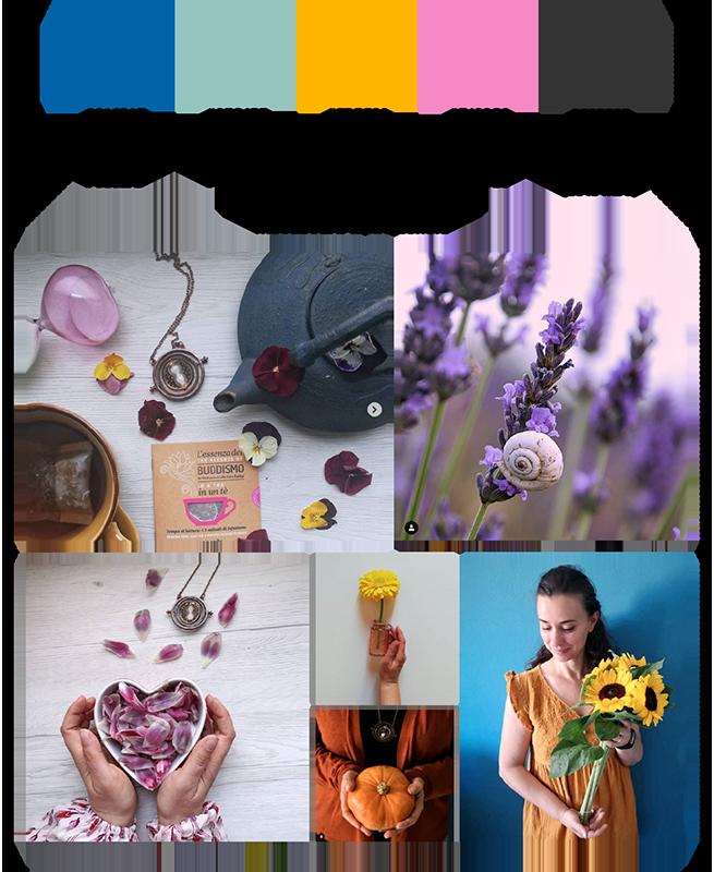 Studio e riferimenti palette colori per Raffaella Giani